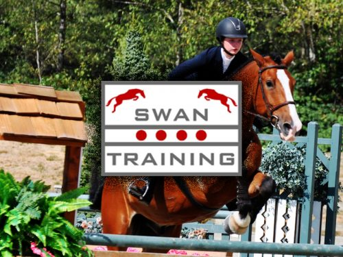 swantraining thumb 500x375 - Home